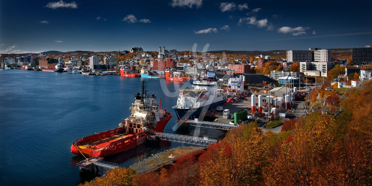 St. John's harbour in the autumn